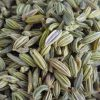 Fennel seed for Arabian Development Company