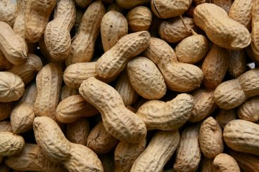 Peanut for Arabian Development Company